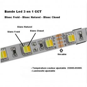 Ruban led 5050 CCT 3en1 5m 12v