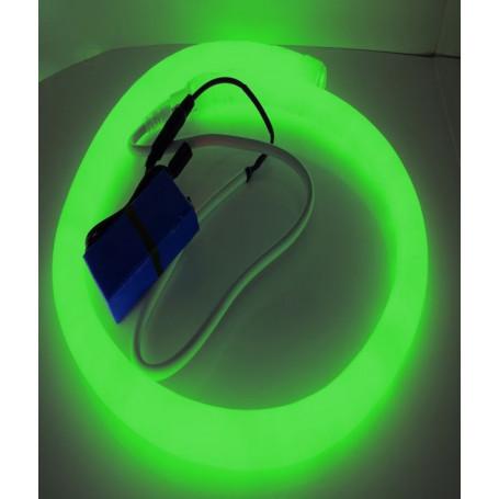 Led néon nomade 12V - vert