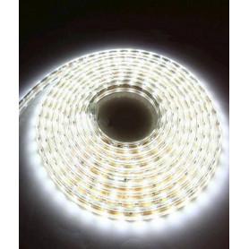 Bande LED 5m 220v Blanc froid