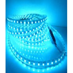 Bande LED 5m 220v bleu ciel