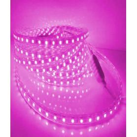 Kit bande LED 5m 220v Rose