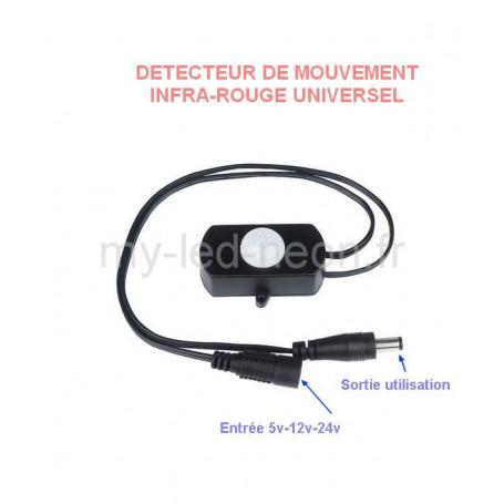 Détecteur de mouvement infra-rouge