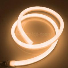 Neon Led 180° standard 220v